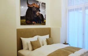 1010-apartment-wien-nibelungengasse-schlafzimmer2