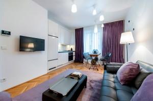 1020-apartment-wien-hammer-purgstall-gasse1-wohnzimmer4